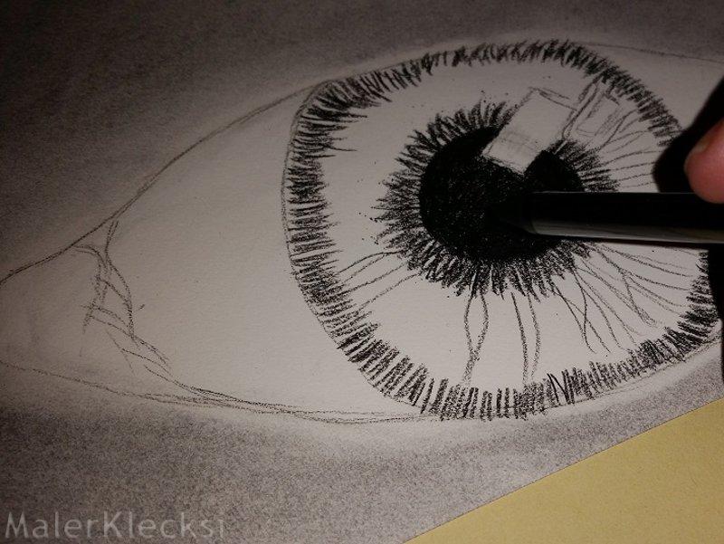 Iris Kohlezeichnung
