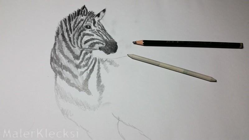 3D-Zebra4