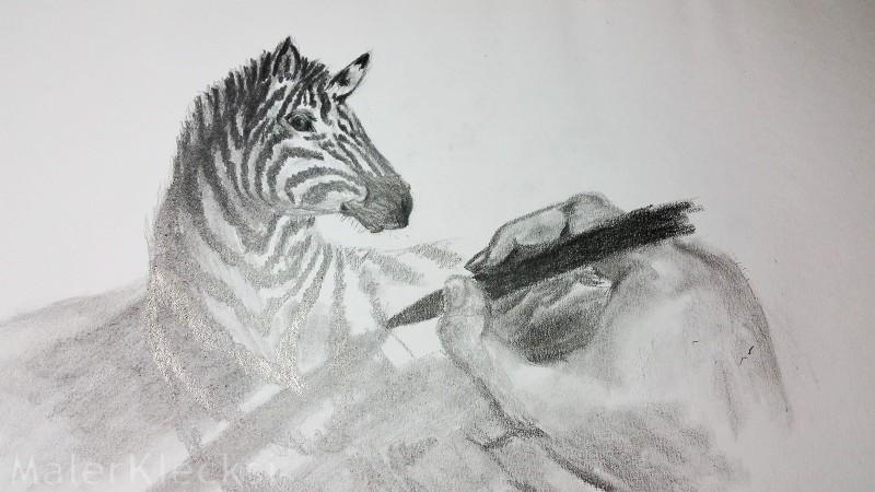 3D-Zebra6