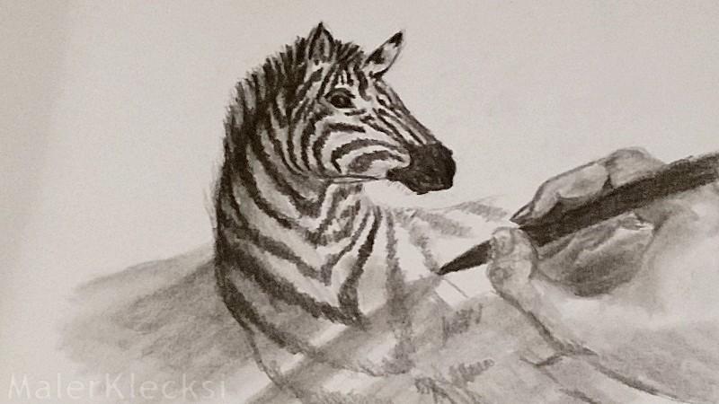 3D-Zebra8