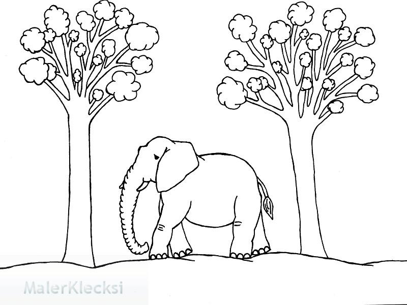 Ausmalbild_Elefant2