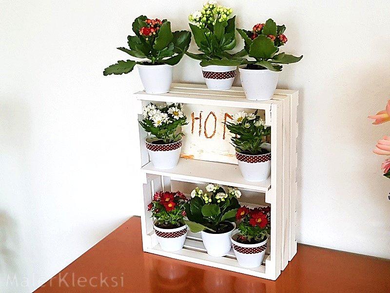 Frühlingsblumen dekorativ in der Holzkiste