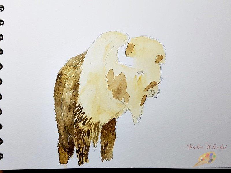 Tier-ABC Bison Fell vorgezeichnet