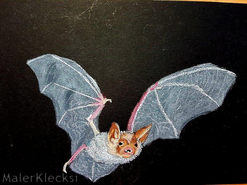 Mitmach-Aktion Tier-ABC -F- Fledermaus der zweite Flügel